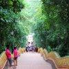 TailanDio Suthep buistų šventyklos laiptai, Chiang Mai