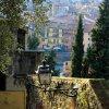 Spalvinga Verona