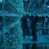 Cosmos Paukščių takas
