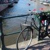 Populiariausia transporto priemonė Amsterdame