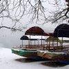 Valtys prie Bled ežero