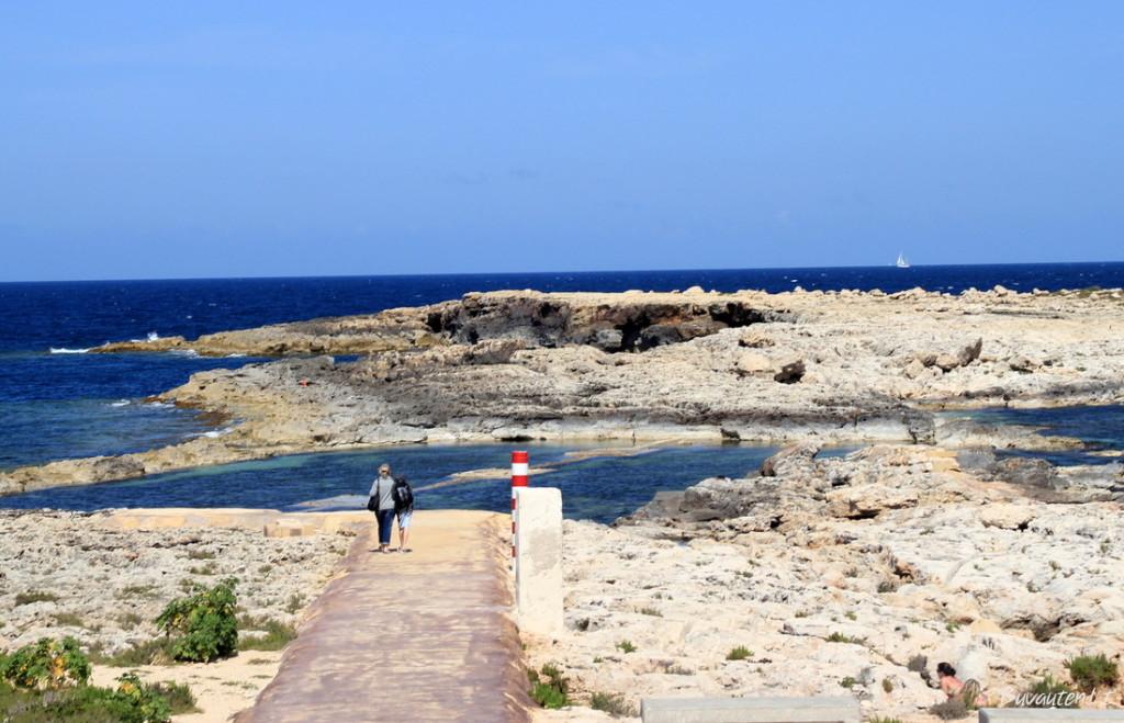 Sodriai mėlyna Viduržiemio jūra skalauja Maltos krantus