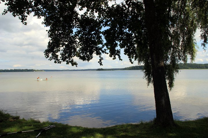 Ežero pakrantė