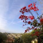 Italijos kurortas Sanremas – kazino, gėlių ir bažnyčių miestas