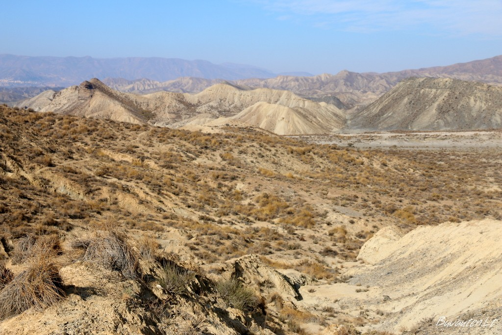 Tabernas dykuma