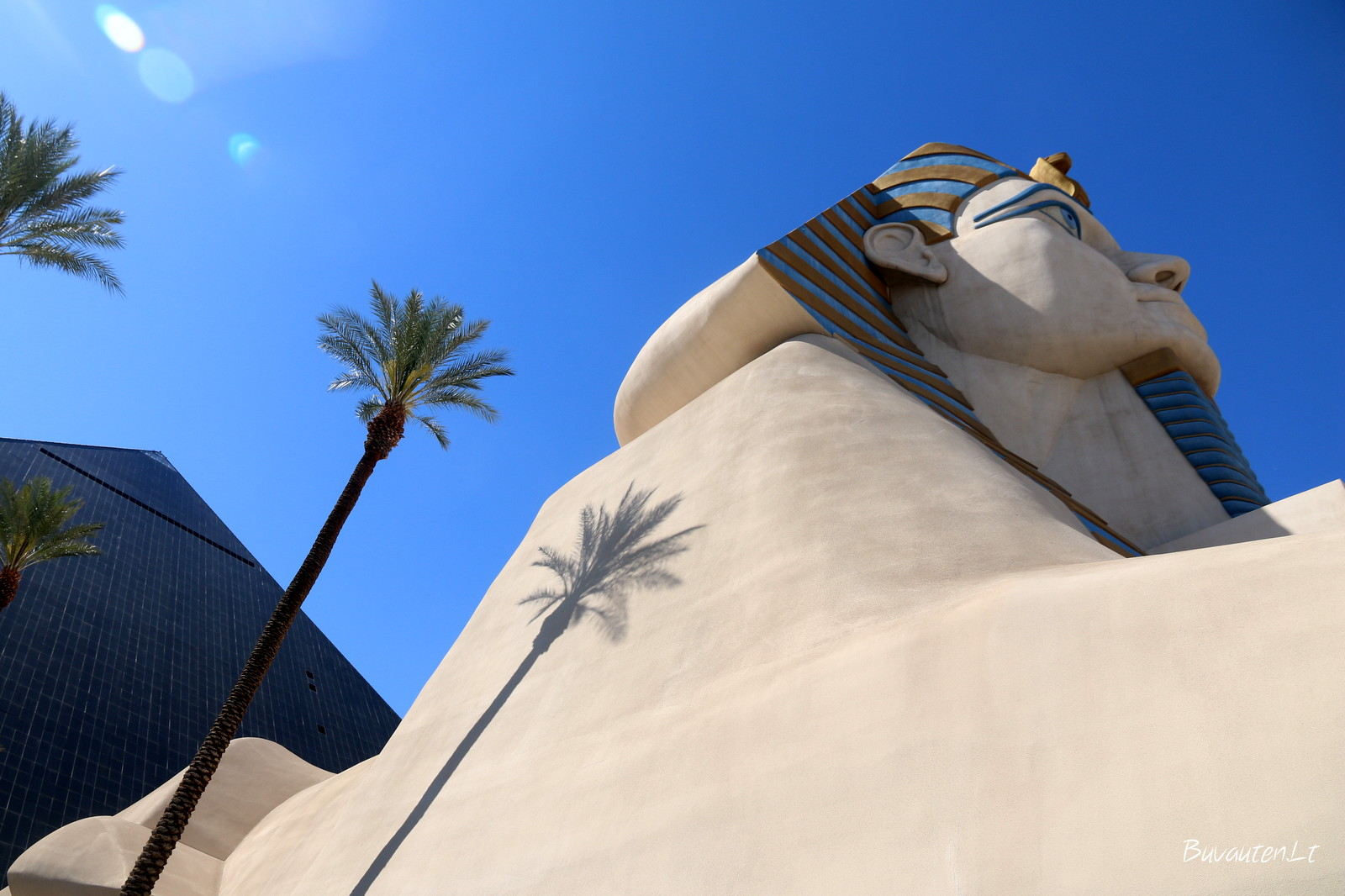 Sfinksas iš arčiau – didžiulis
