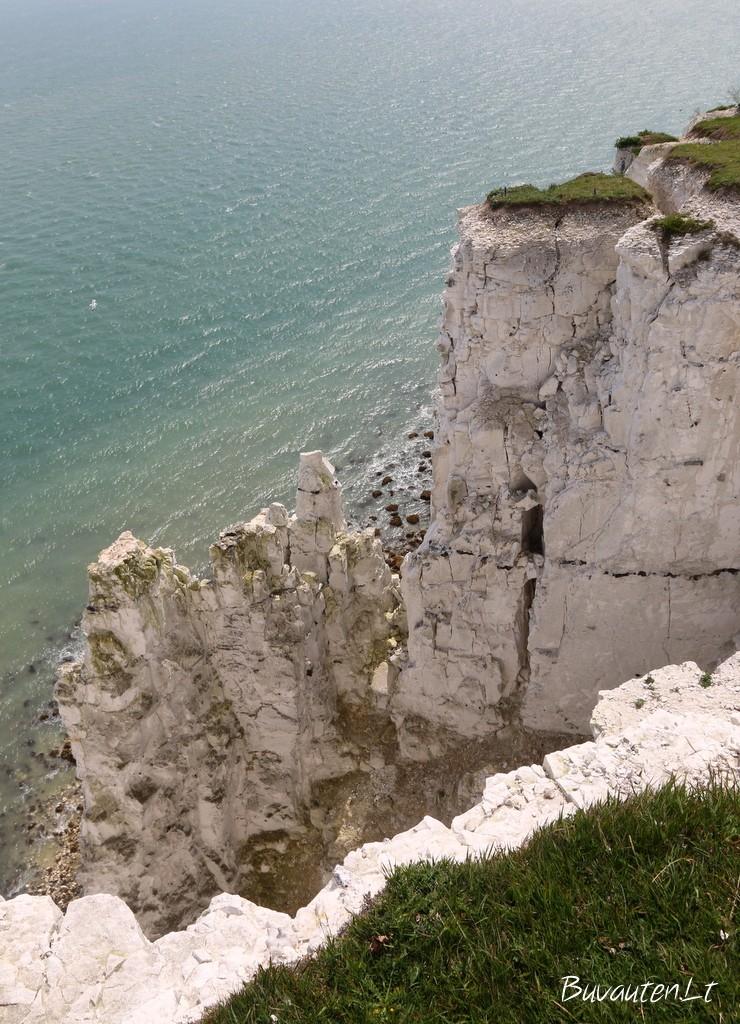 Doverio baltosios kalvos