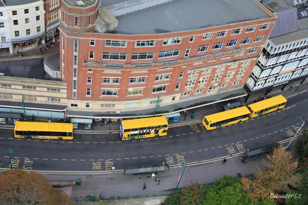Geltoni autobusai