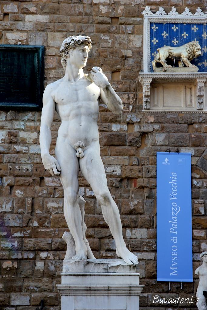 Dovydo kopija, stovinti originaliojoje vietoje šalia Vecchio rūmų
