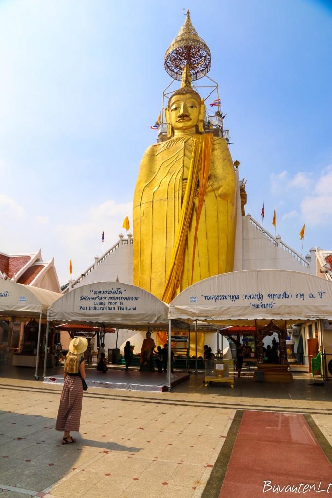 ir auksu spindinti Didžioji Buda