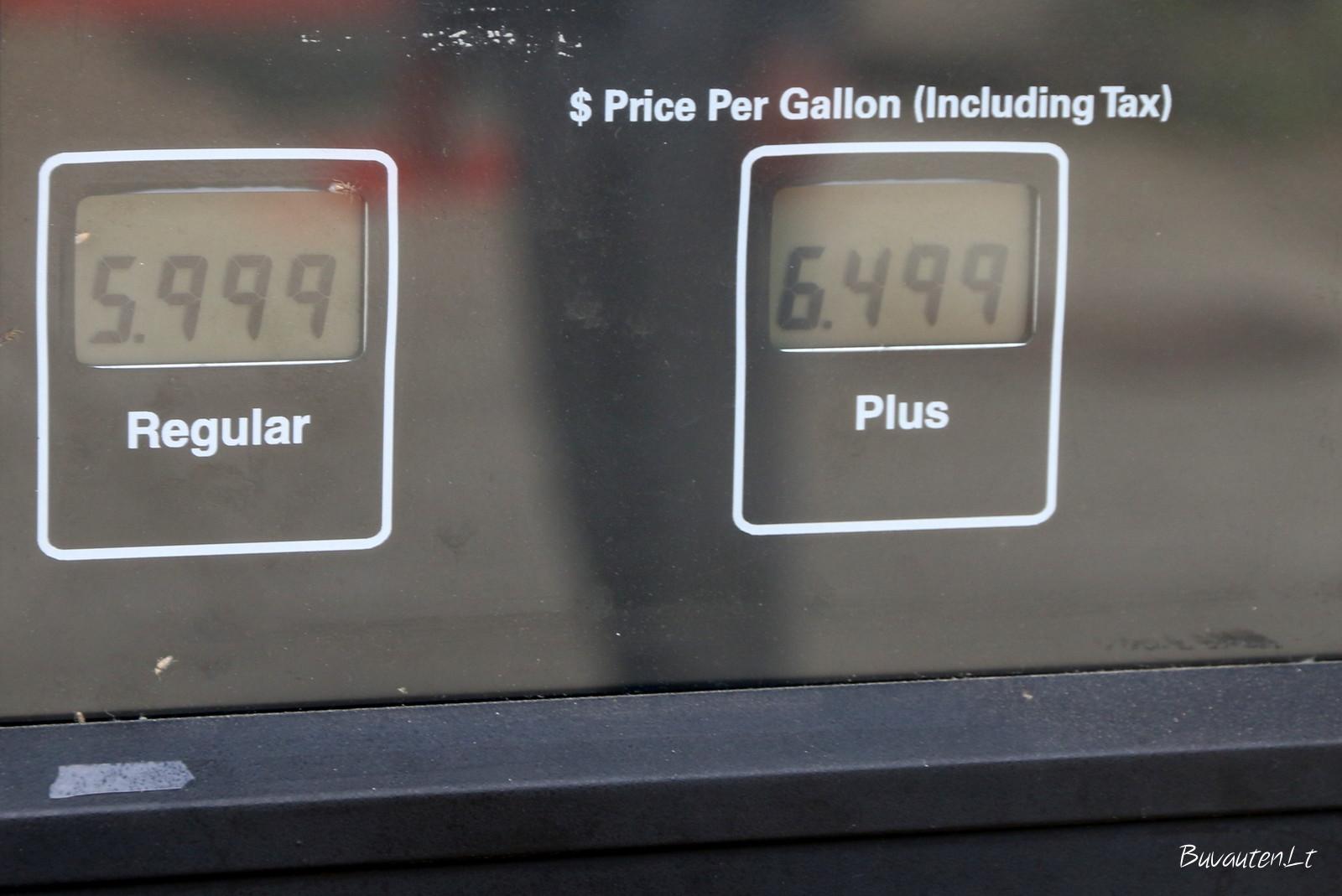 Kuros kainos Amerikoje
