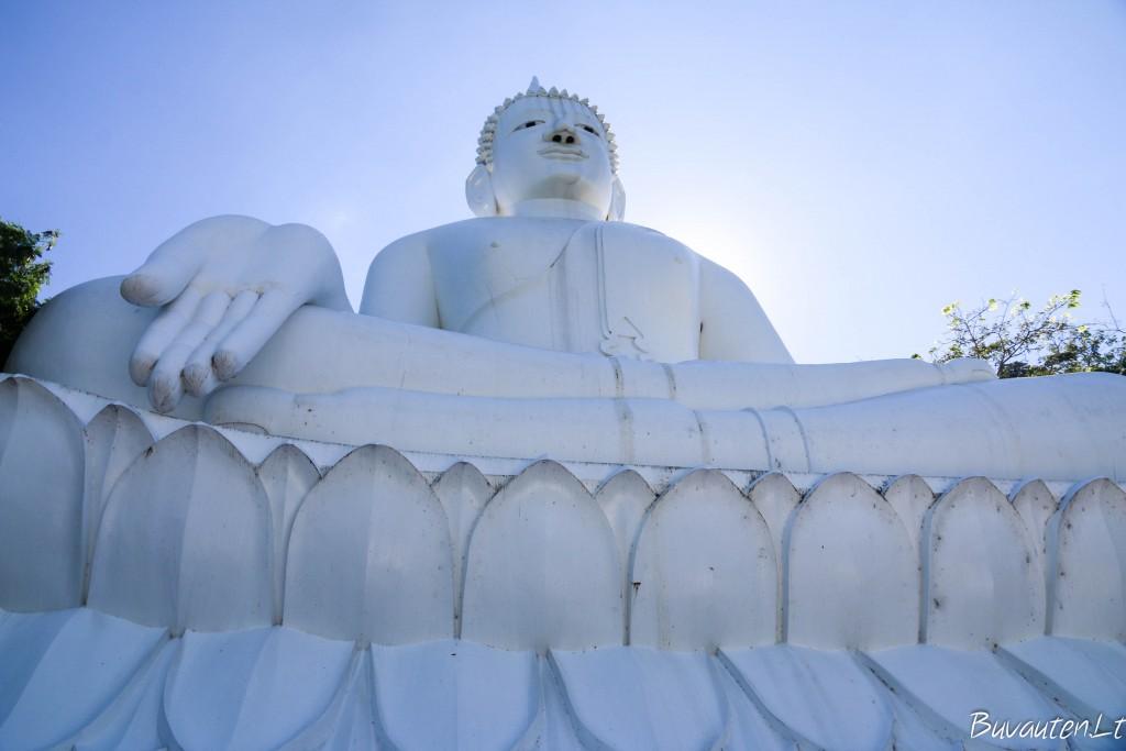 Didžiulė Buda