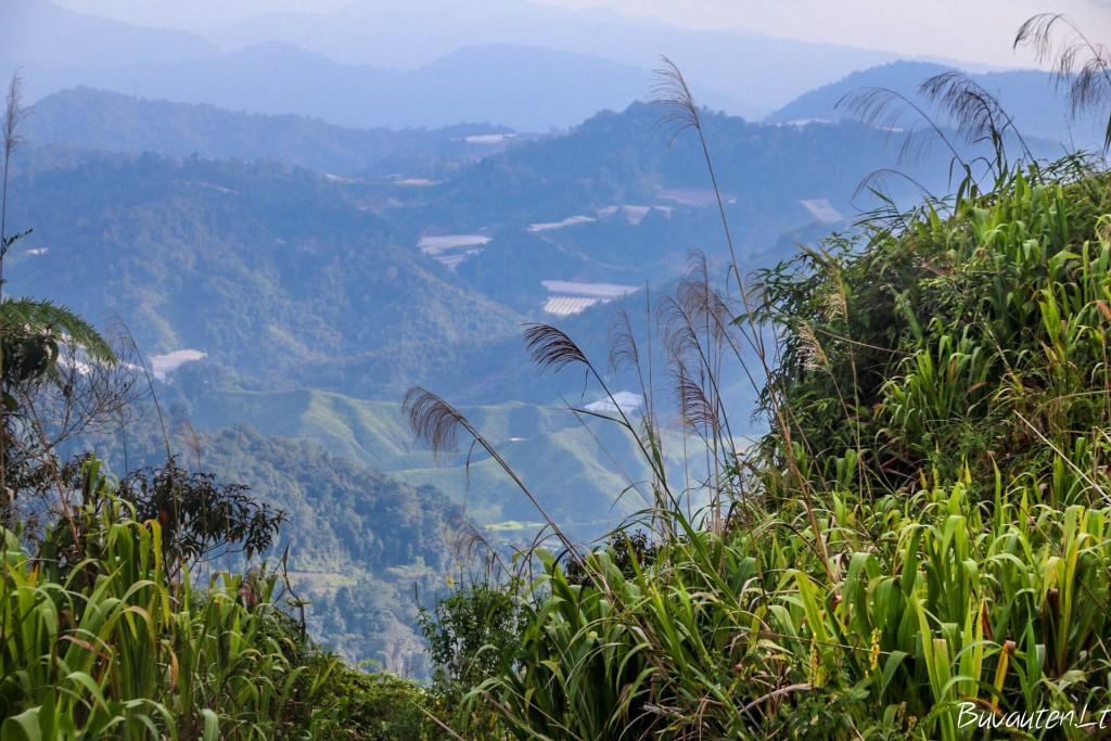 Vaizdas nuo Gunung Jasar viršukalnės 1696 m aukštyje
