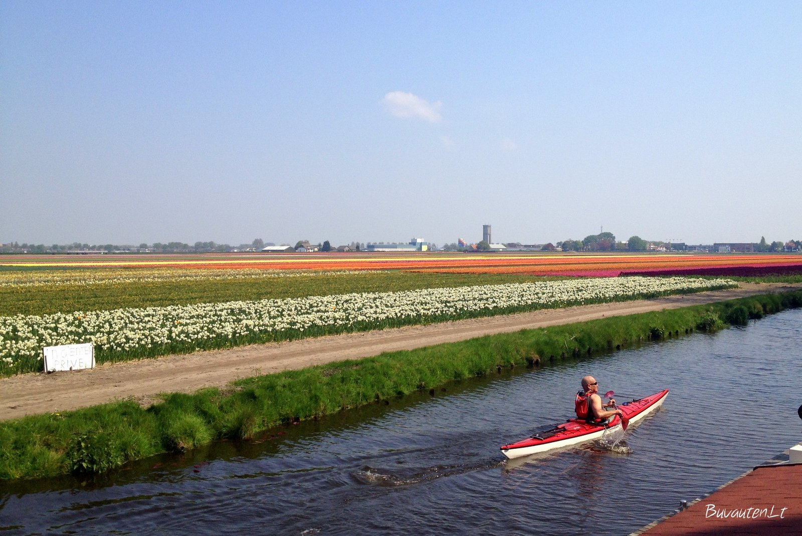 Kanalai ir tulpių laukai parke