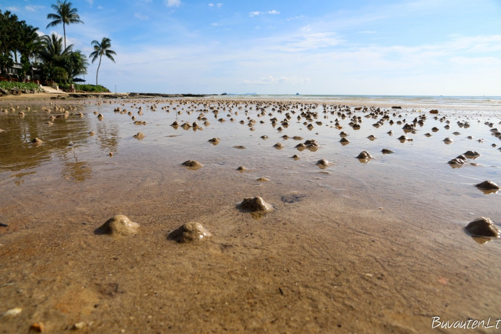 Klong Muang paplūdimys