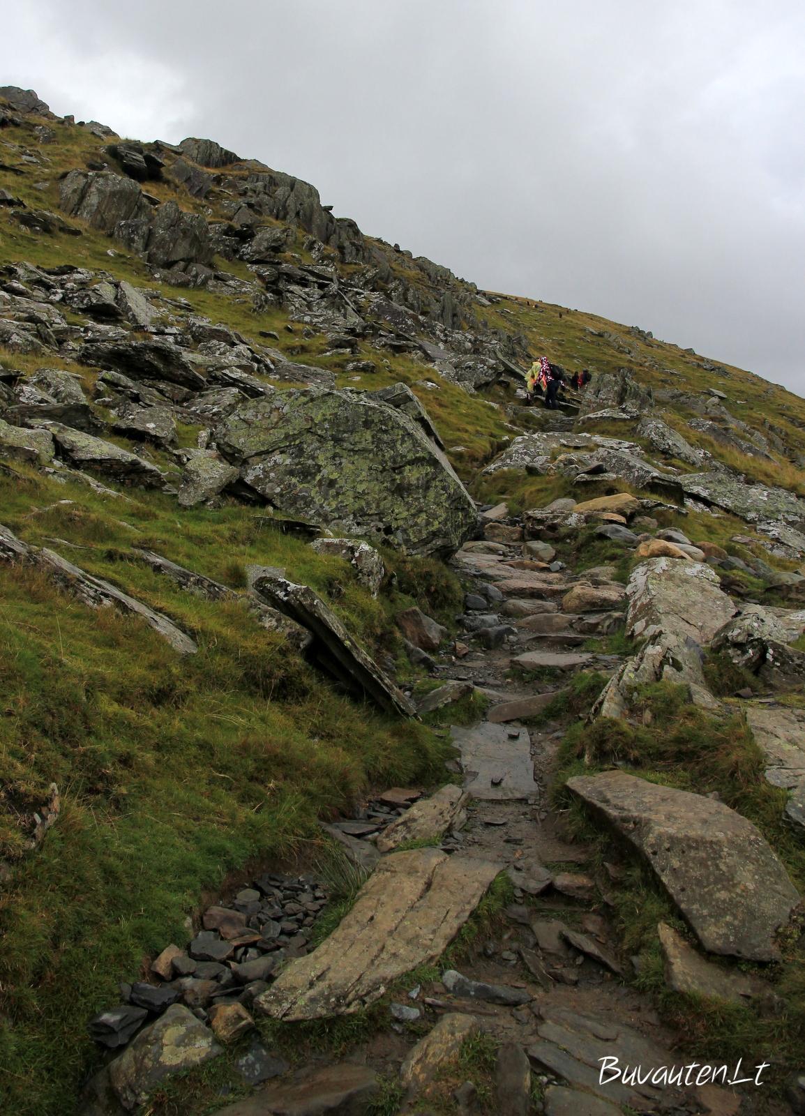 Akmenuotas kelias į viršūnę