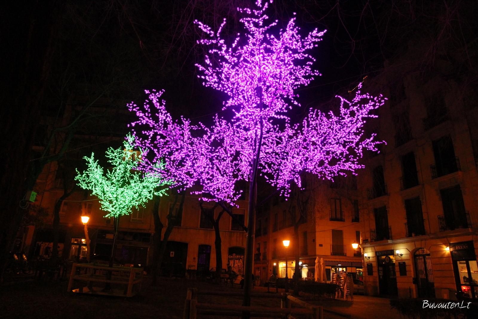 Šventinis Madridas