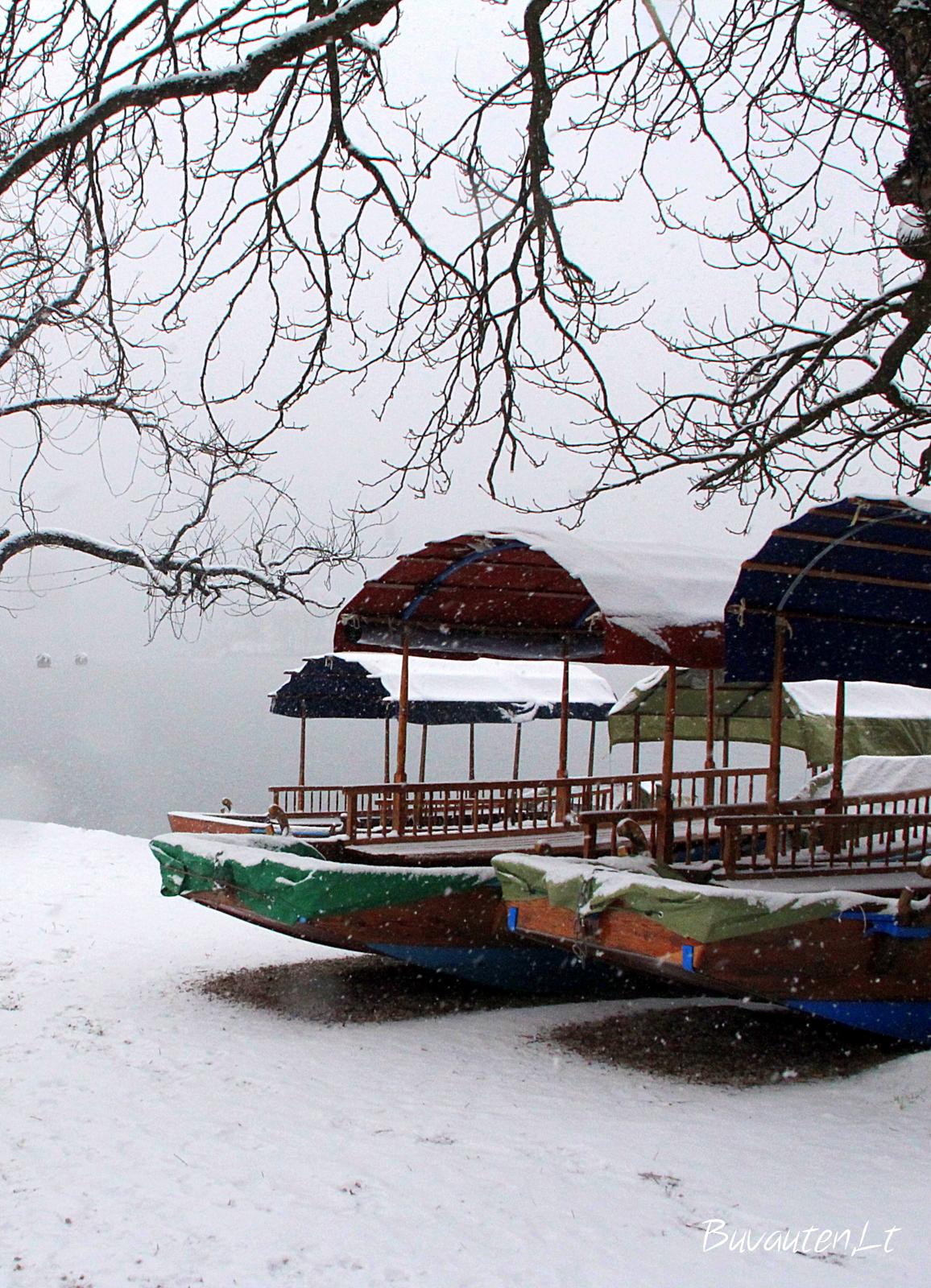 Turistų nesulaukusios tradicinės valtys Pletna
