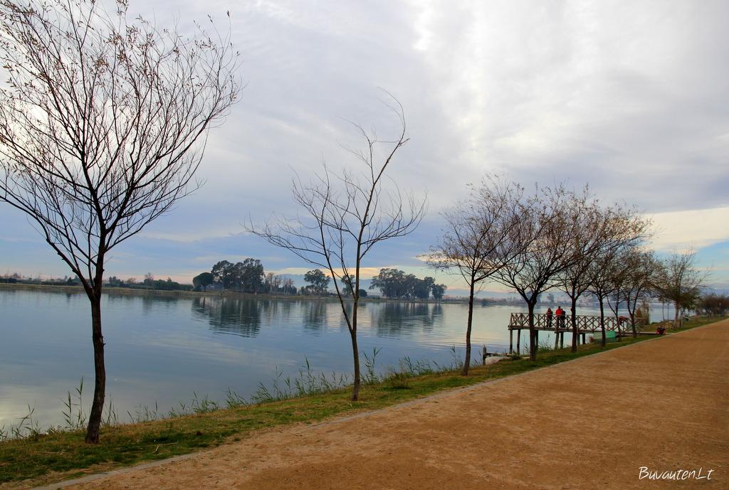 Ebro upė