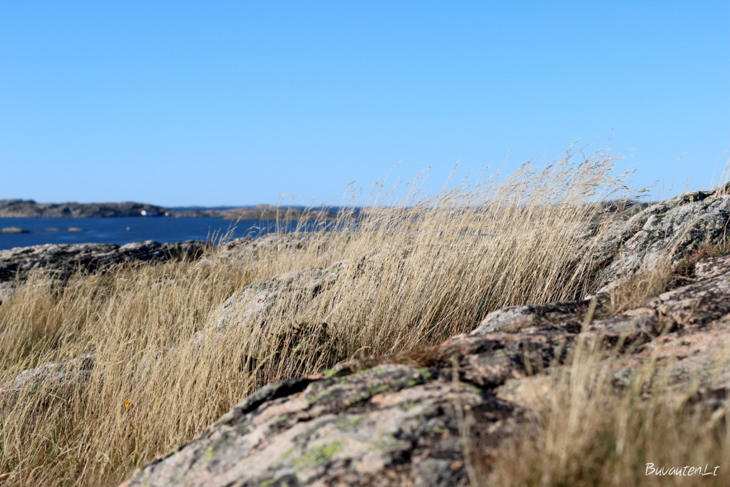 Švedijos salos