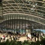 Sky Garden: nemokamas žvilgsnis į Londoną iš aukštai