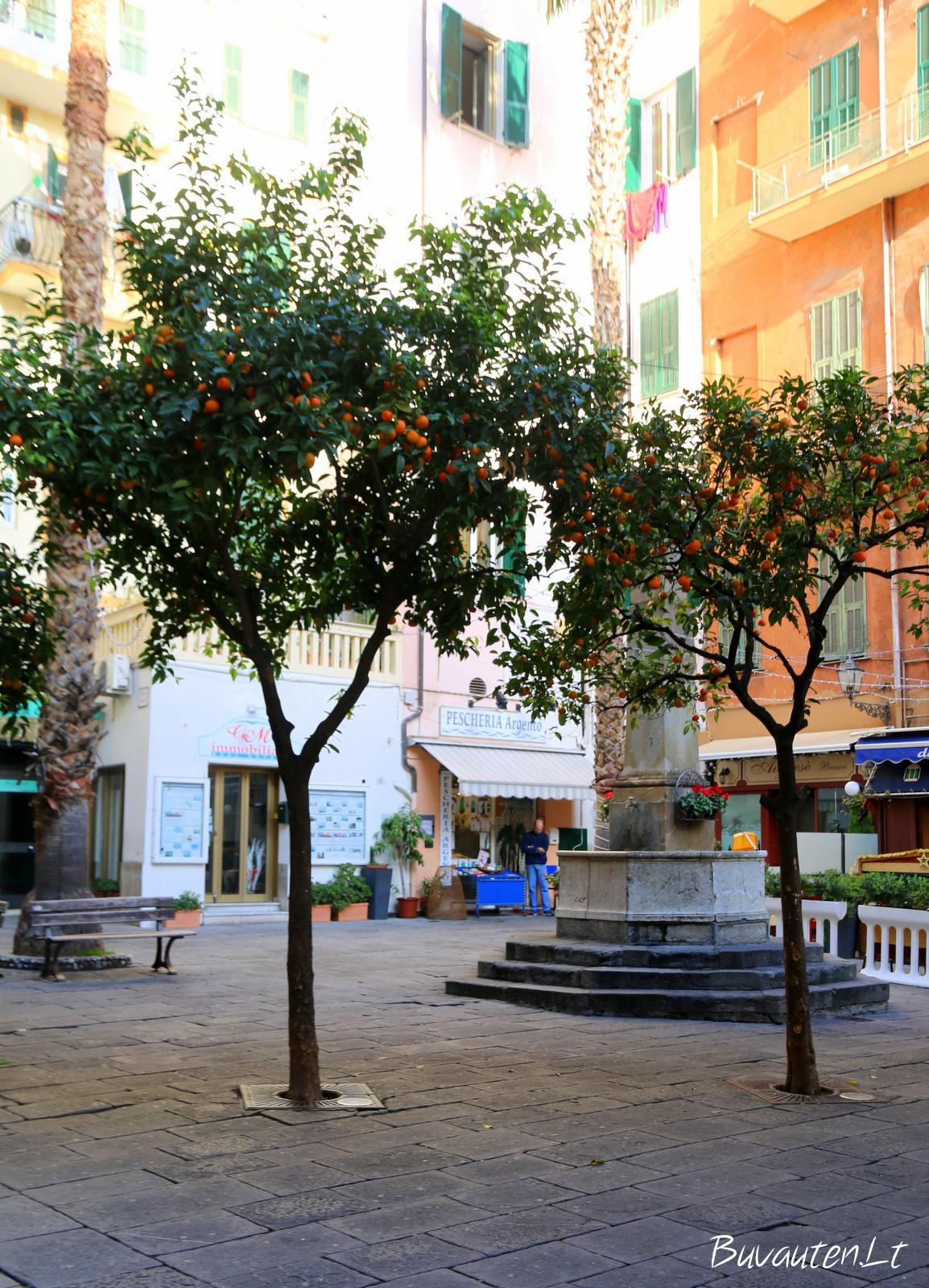 Apsnūdęs rytinis Sanremo senamiestis