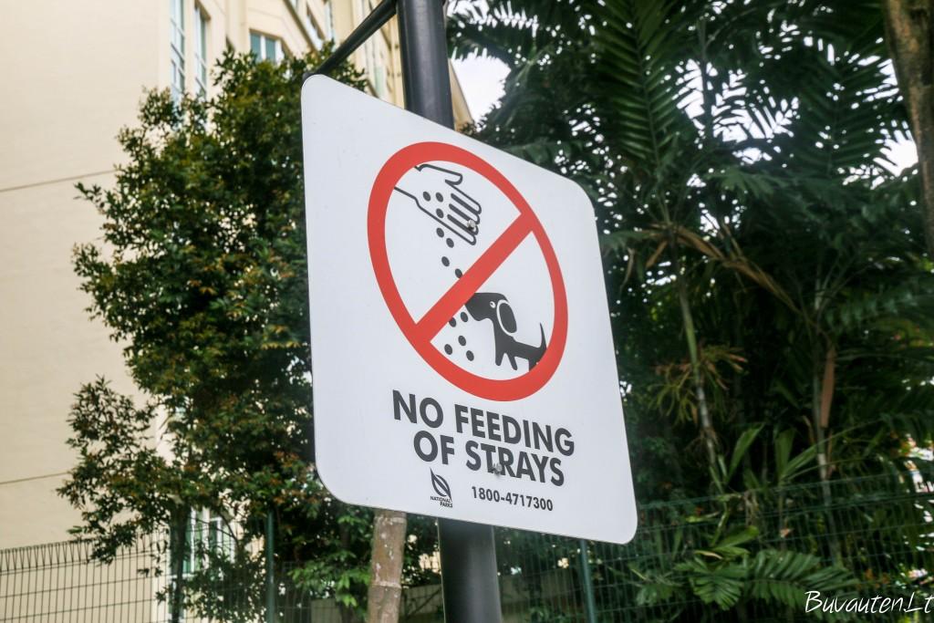 Nemaitinti benamių gyvūnų!
