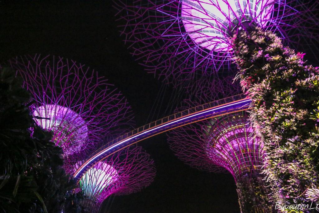 Modernioji magija - medžiai lyg iš kitos planetos