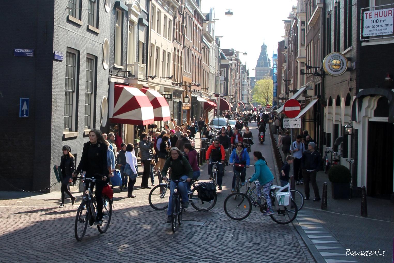 Amsterdamo gatvėse karaliauja dviratininkai