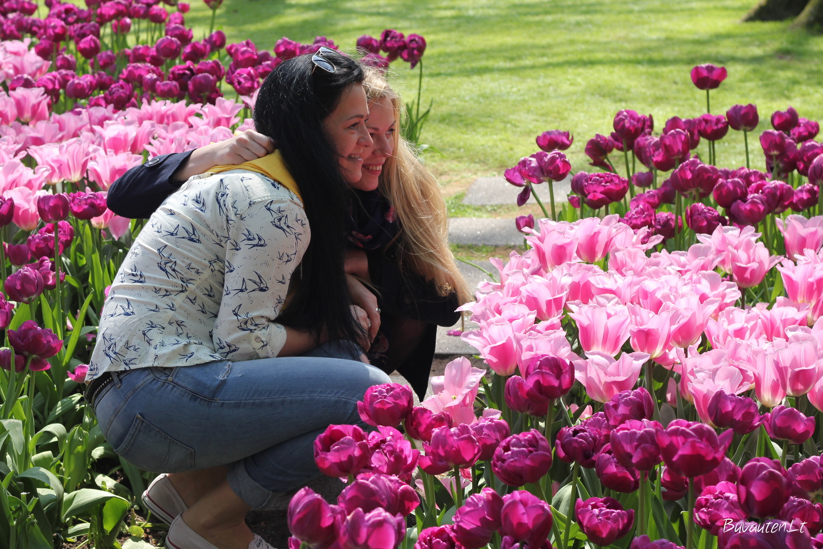 Tarp tulpių Keukenhofe
