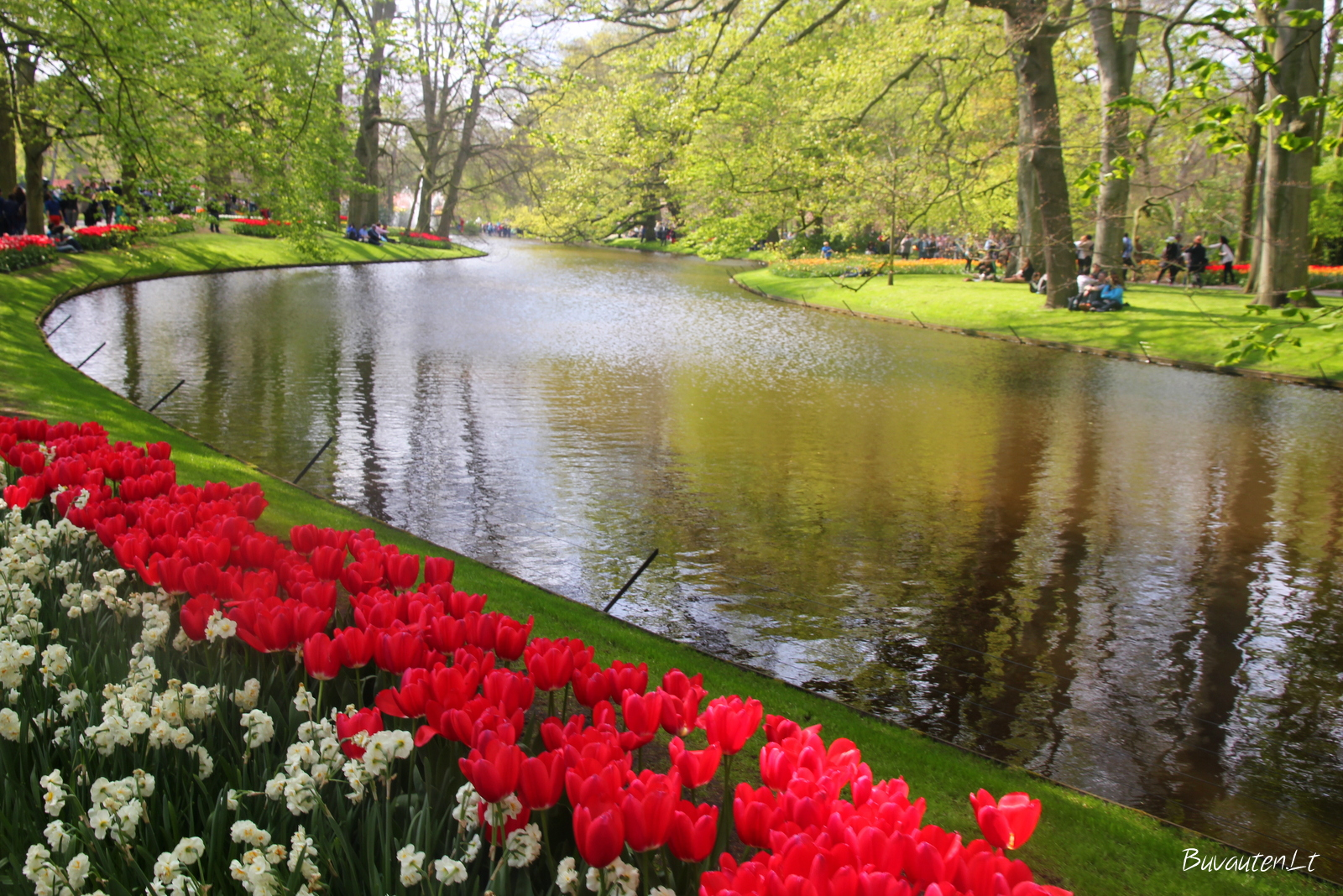 Keukenhofo gėlių parkas