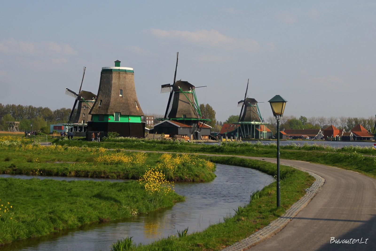 Olandiškas kraštovaizdis