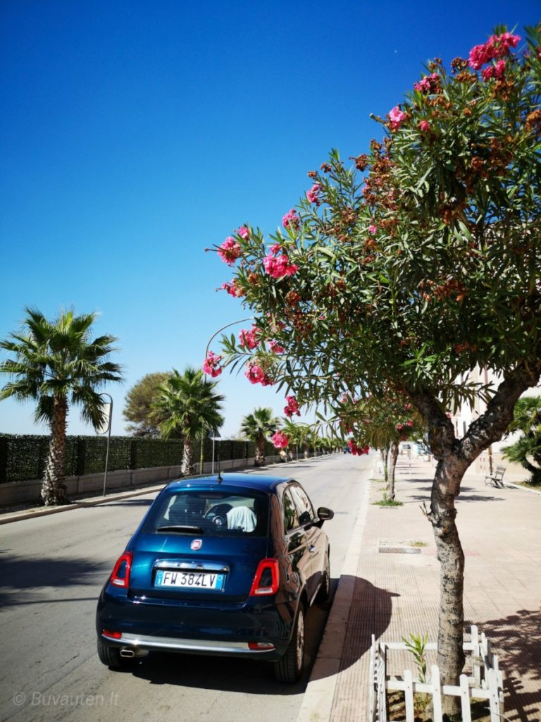 Italiskas automobilis