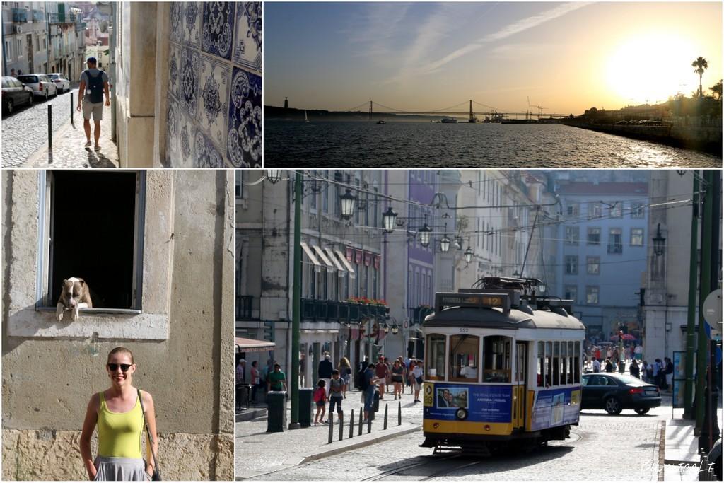 Lisabonos grožybės