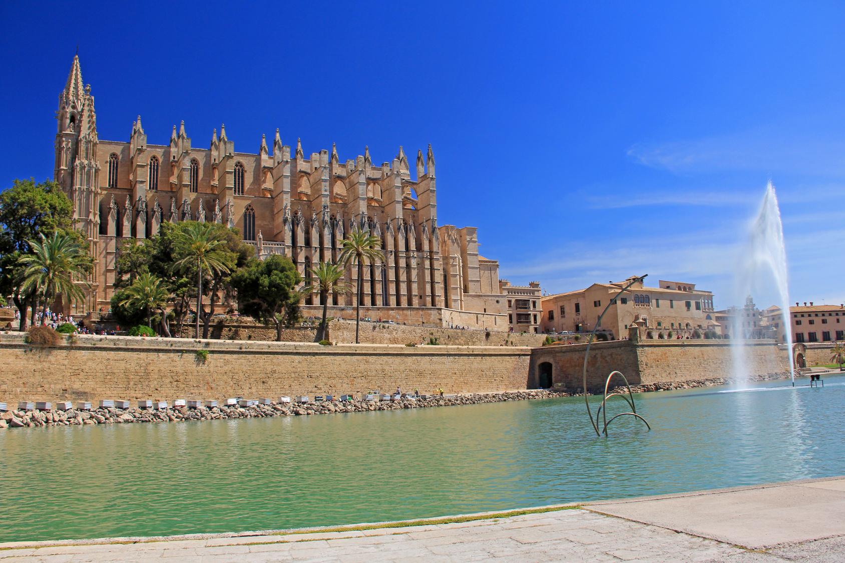 Palmos katedra