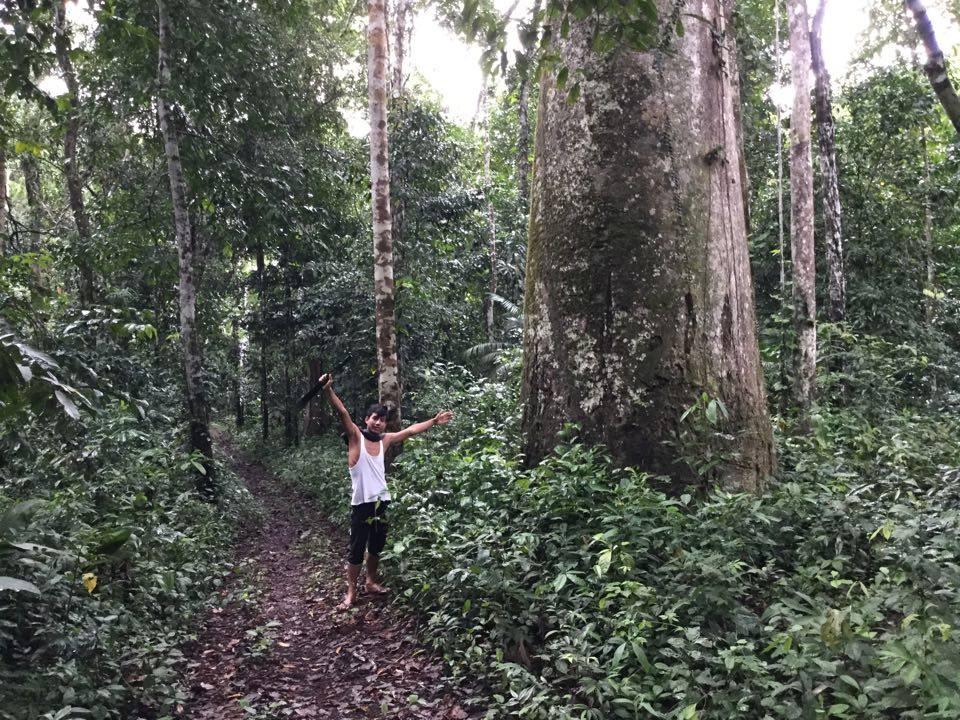 Edgaras susidraugavo su vietiniu Billy, kuris aprodė džiungles